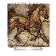 A Horse - Cave Art Shower Curtain