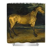 A Horse Frightened By Lightning Shower Curtain