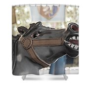 A Horse Named Bolt Shower Curtain