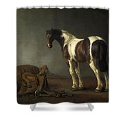 A Horse With A Saddle Beside It Shower Curtain