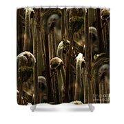 A Jungle Of Ferns Shower Curtain