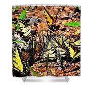 A Kaleidoscope Of Butterflies Shower Curtain