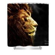 A King's Look 2 Shower Curtain