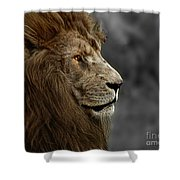 A King's Look Shower Curtain