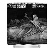 A King's Repose Shower Curtain