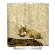 A Kiss For Mom Shower Curtain