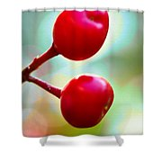 A Kiss Of Spring    A Promise Of Summer Shower Curtain