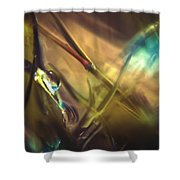 A La Lumiere Shower Curtain by Taylan Apukovska