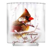 A Lady For Christmas - Cardinal Card Shower Curtain