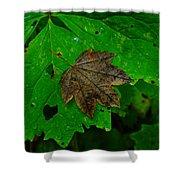 A Leaf Upon A Leaf Shower Curtain