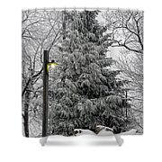 A Light Snow Shower Curtain