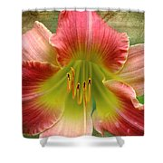 A Lily A Day Shower Curtain