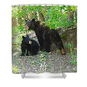 A Little Growl Before Departing Shower Curtain