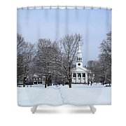 A Little Red White And Blue Shower Curtain