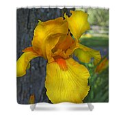 A Lively Soul Blooms Shower Curtain