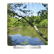 A Look At Lake Shower Curtain by Good Taste Art