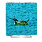 A Loonie Loon Shower Curtain by Jeff Swan