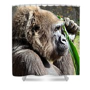 A Lovely Thought Shower Curtain