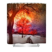 A Magic Winter Shower Curtain
