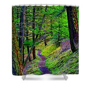 A Magical Path To Enlightenment Shower Curtain