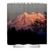 A Majestic Goodnight Shower Curtain
