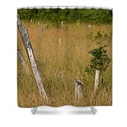 A Marsh In Maine Shower Curtain