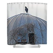 A Metaphor For Something By Ami Shecter Shower Curtain