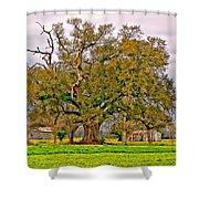 A Mighty Oak Shower Curtain
