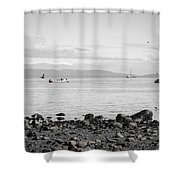 A Moment In Time Herring Season Shower Curtain