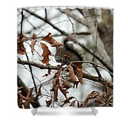 A Moment's Glance Shower Curtain