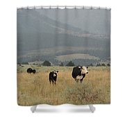 A Montana Memory Shower Curtain