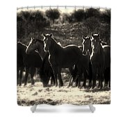 A Morning Moment Shower Curtain