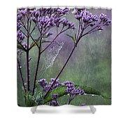 A Morning Walk Shower Curtain