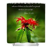 A Mountain Flower  John 3 16 Shower Curtain