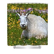 A Mouthful Of Flowers Shower Curtain
