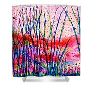 A New Perspective Shower Curtain