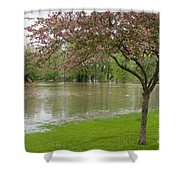 A New Pond Shower Curtain