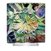 A New Sun Flower Shower Curtain by Mindy Newman