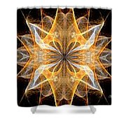 A New Year's Star 2014 Shower Curtain