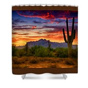 A Painted Desert  Shower Curtain