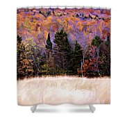 A Painting Autumn Field Shower Curtain