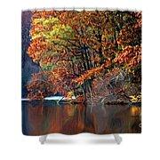 A Painting Barney's Autumn Pond Shower Curtain
