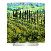 A Painting Tuscan Panoramic 4 Shower Curtain