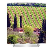 A Painting Tuscan Vineyard Shower Curtain
