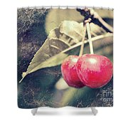 A Pair Of Cherries Shower Curtain