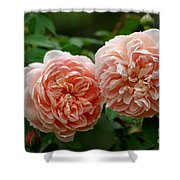 A Pair Of Colette Roses Shower Curtain
