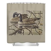 A Pair Of Ducks Shower Curtain