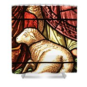 A Pair Of Lambs Shower Curtain