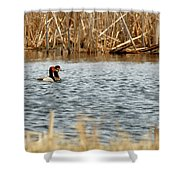 A Pair Of Redheads 2 Shower Curtain