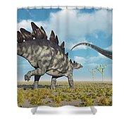 A Pair Of Stegosaurus Dinosaurs Shower Curtain